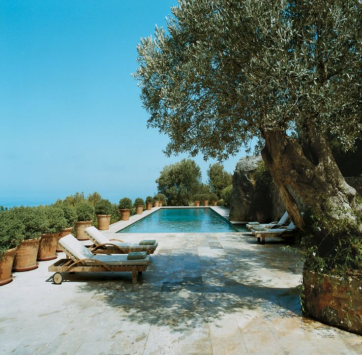 The pool at Celia Forner and Francesco Venturi's Majorcan escape is surrounded by jasmine hedges.