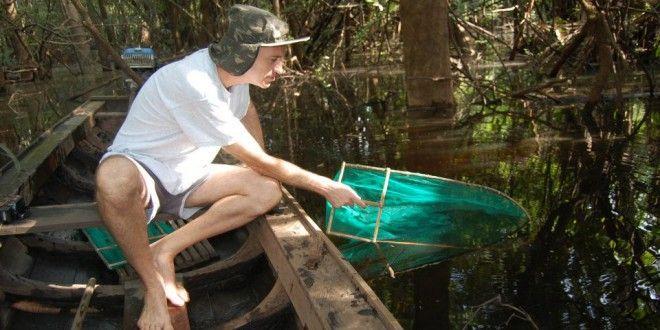 INSTRUÇÃO NORMATIVA: Estabelece critérios e procedimentos para captura de exemplares selvagens