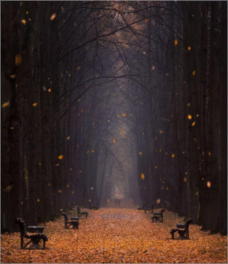 Autumns days