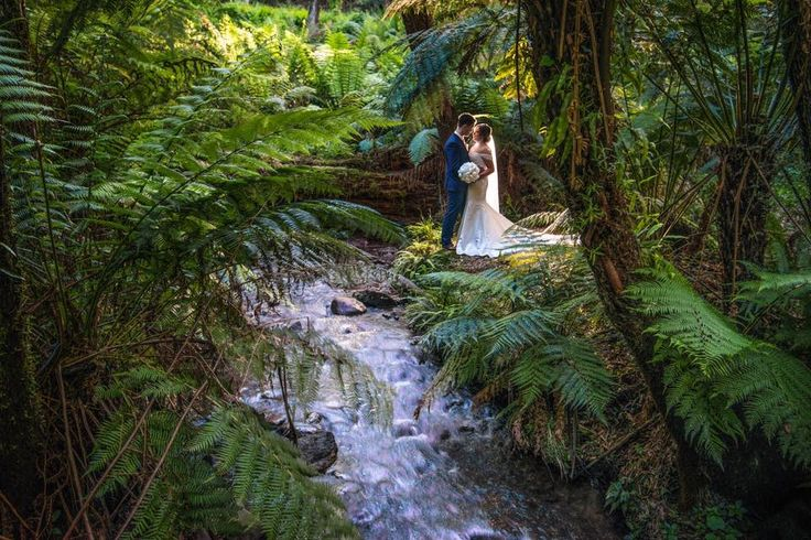 We love when our newlyweds send us photos from their wedding day at Lyrebird Falls!   Mr & Mrs Jenkinson