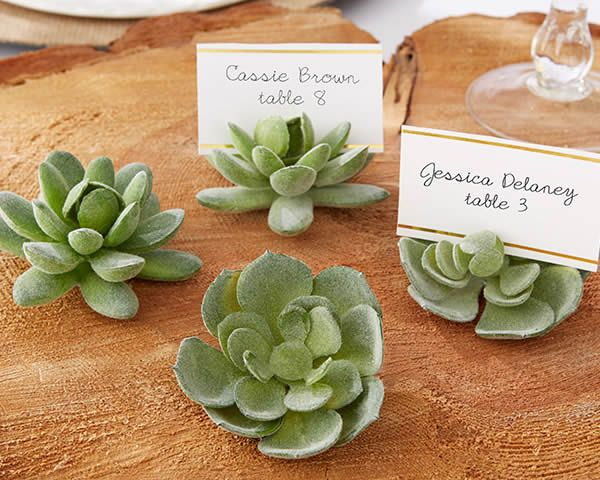 show off your green thumb with these succulent wedding place card holders