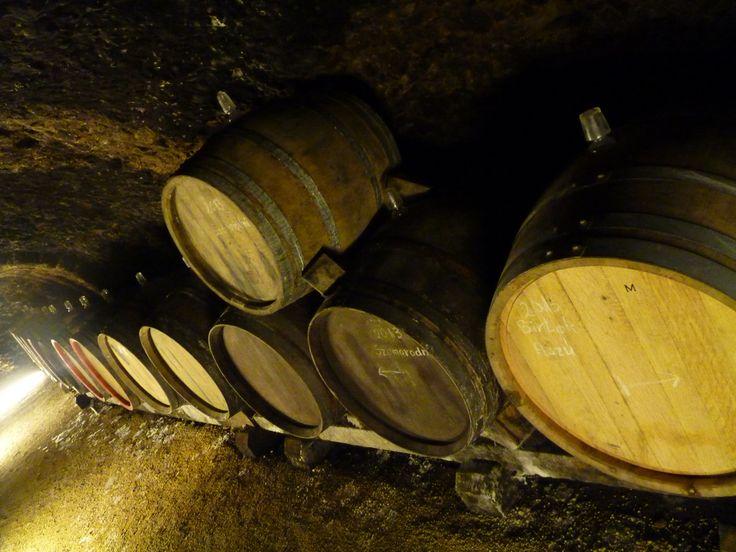 Holdvölgy Tokaji Winery Mád Hungary wine cellar system