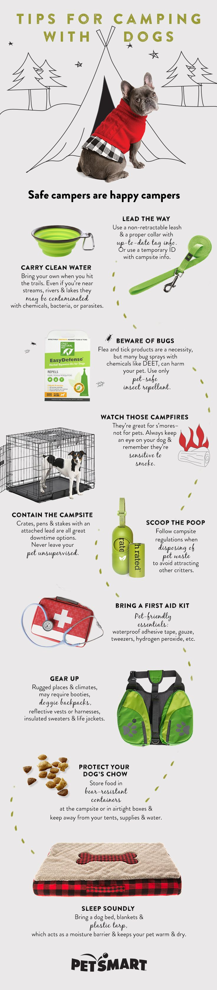 Canines can be happy campers when you're well-prepared. Here are 10 tips for camping with dogs, from what to pack, to proper disposal of waste to our favorite products!