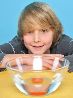Experimente für Kinder: In diesem Versuch lernen Sie das archimedische Prinzip anhand von schwimmenden Zitronen kennen. Eine Zitrone ist mit Schale zwar schwerer als ohne, aber Gewicht ist beim Schwimmen nicht alles. Denn in der Zitronenschale befinden sich tausende winziger Luftbläschen. Die geben der sauren Frucht den nötigen Auftrieb, um oben zu bleiben.