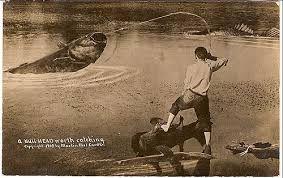 Kuvahaun tulos haulle William H. Martin