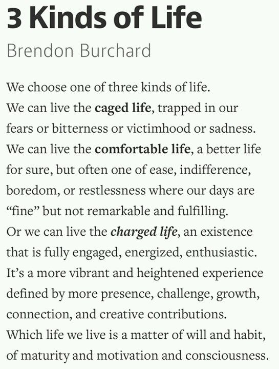 """I enjoyed his book """"The Motivation Manifesto"""", but I love his pod casts. Check him out for free at iTunes. This is what I've been listening to on my morning commute. Three kinds of life - Brendon Burchard"""