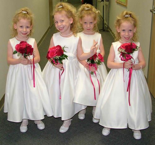 Identical quadruplets?  I don't think so, but they sure are cute!
