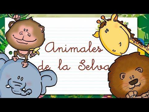 Animales de la SELVA en ESPAÑOL para niños - YouTube