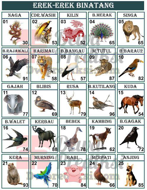 Binatangnya Gambar Binatang Fajar Pakong Guru Paud