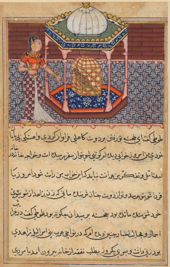 Tuti-Nama (Tales of a Parrot): Tale LII | Cleveland Museum of Art