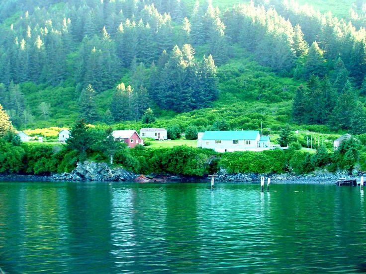 Alaska    Go hunting fishing and camping in
