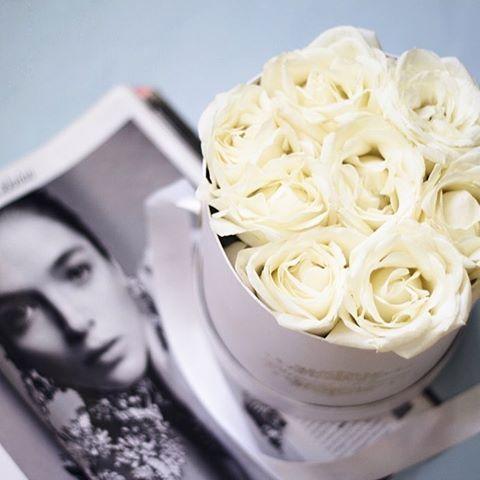 Přidali jsme další flowerbox do nabídky. Udělejte radost někomu blízkému❤️!!! We added new miniflowerbox. Make someone happy❤️!!! Pro objednani jděte na www.glamourflowers.czGo➡️@glamourflowers.cz #rosebox #цветывкоробке #rosebox #Flowerbox #kvetinypraha #instaprague #Madeinczech #prague #kytice #kyticepraha #скидка #czechboy #praguegirl  #glamourflowers  #redroses #pragueboy #ruze #box #pragueflowers #kvetiny #ruzevkrabici #gentleman #roses #hatboxes #fitnessboy #flowerboxprague