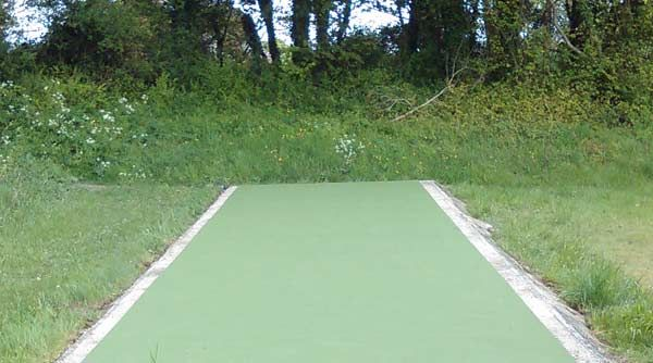 Welcome to stellarsports cricket mat http://www.stellarsports.co.uk/cricket/cricket-matting-artificial-cricket-surface.html