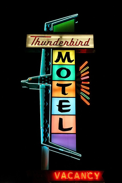 i loved seeing these Thunderbird Motel signs when we were driving down the highway