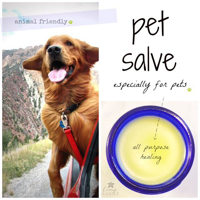 Animal Friendly Organic Pet Salve Safe for sores, wounds, hot spots, dry skin and sunburned noses.