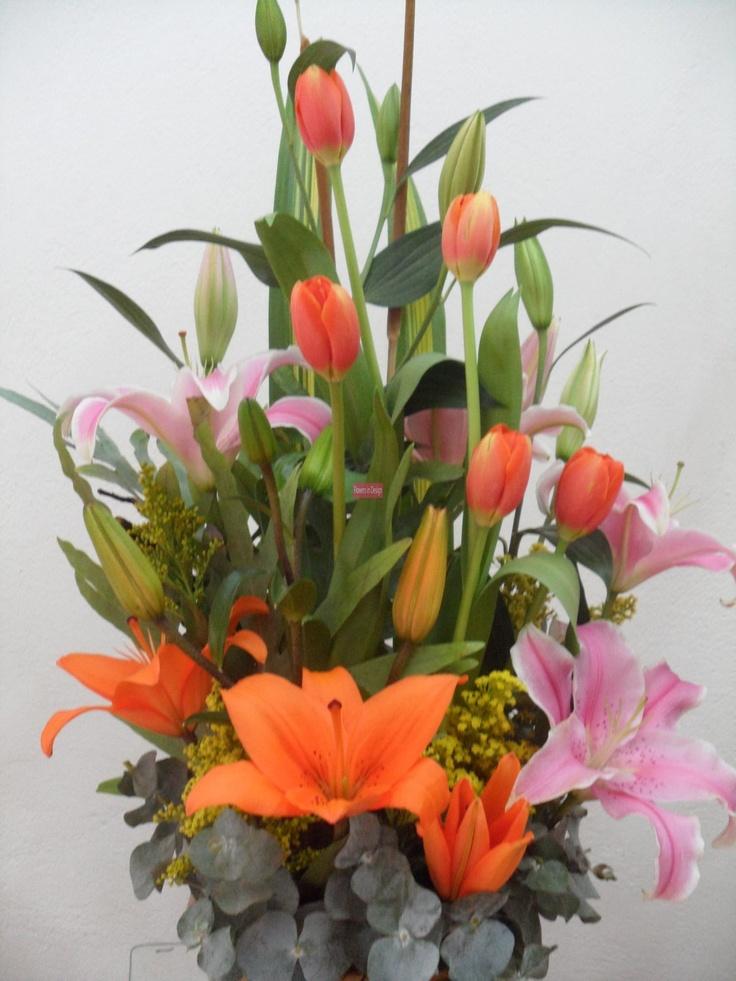 mejores 2526 imágenes de tulipanes en pinterest | hermosas flores