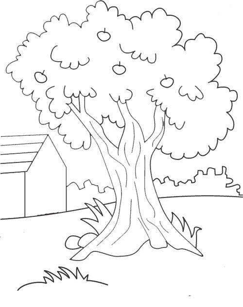 belajar mewarnai gambar pohon