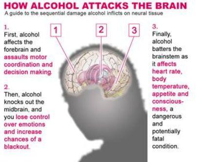 BAHAYA MINUMAN ALKOHOL