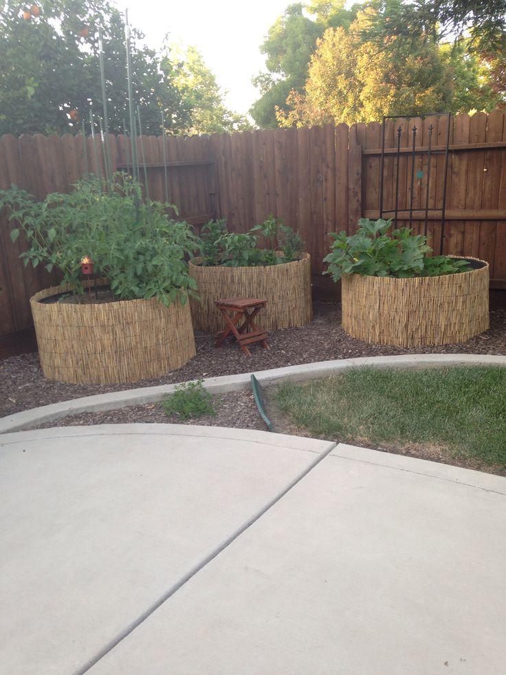 Veggie garden idea for small space