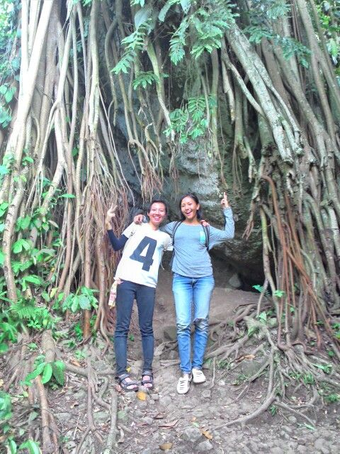 Akar pohon yang mengagumkan pada jalur pendakian Tebing Munara di kawasan Rumpin, Bogor, Jawa Barat