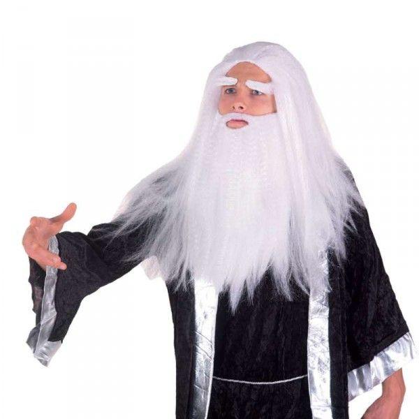 Druidenperücke Zaubererperücke Merlinperücke Männerperück lang, Karneval Perücke weiß, Perücke alter Mann, Perücke Magier