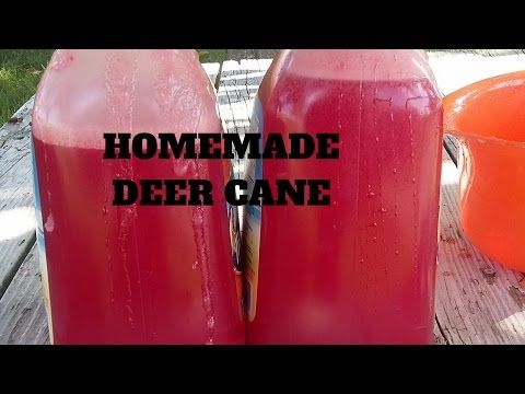 How To Make Homemade Deer Cane (SECRET RECIPE) Trail Cam Videos For Proof That Works - YouTube