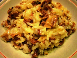 csirkés rizottó mario malaguti: risotto alla sbirraglia