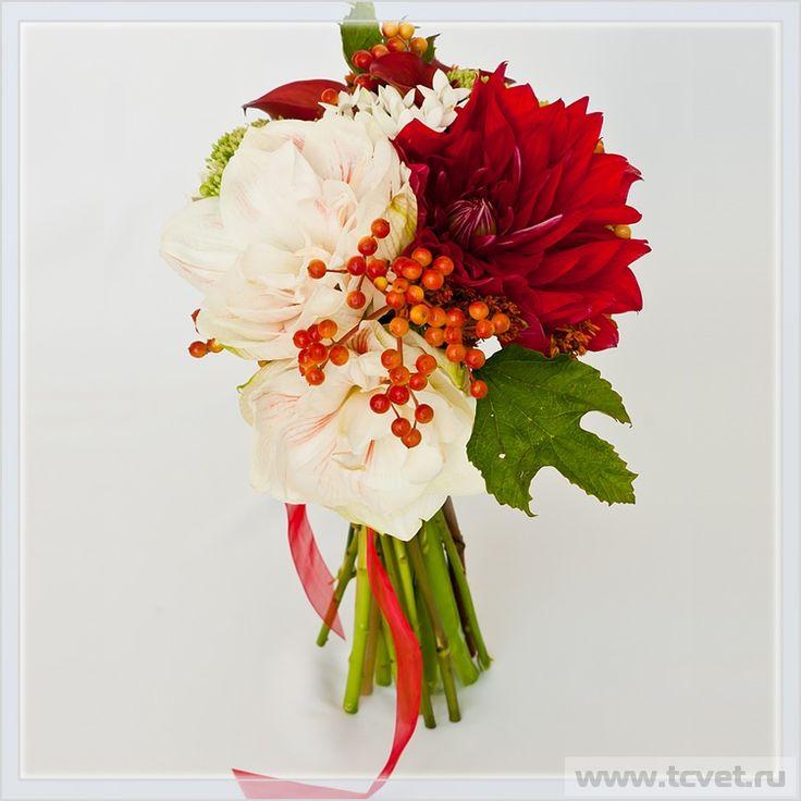 beautiful bouquet of amaryllis - Hledat Googlem