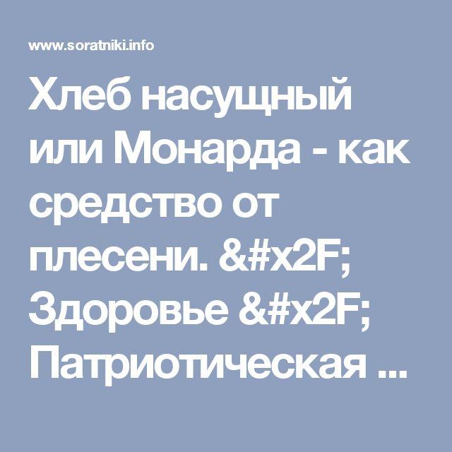 Хлеб насущный или Монарда - как средство от плесени. / Здоровье / Патриотическая сеть России
