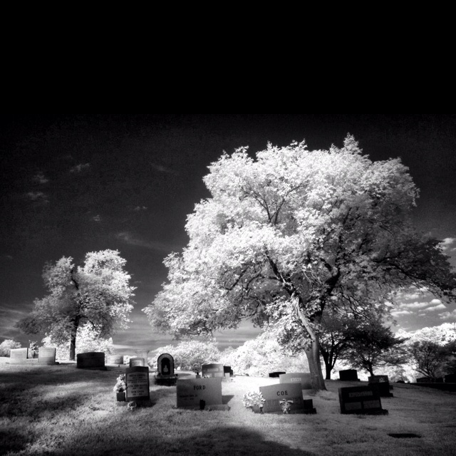 Arlington Cemetery, Infrared.