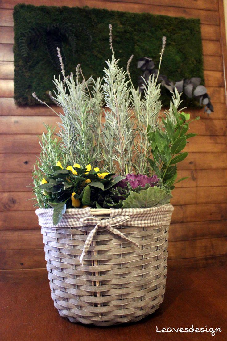 Centro natural campestre de aromáticas como romero, lavanda, laurel, brassicas y caspicum #todoslossantos #arreglosflorales #regalaflores #aromaticas #color #centrosflorales #leavesdesign
