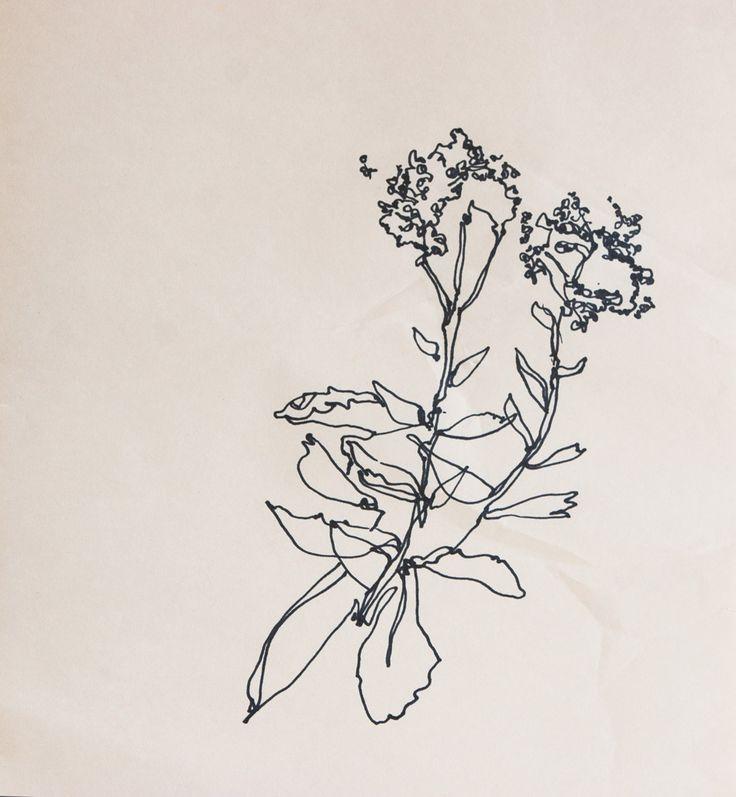 Sketchbook - Lisa Hedge