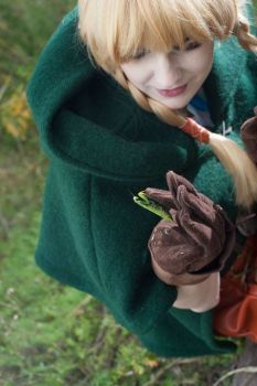 Linkle cosplay with a praying mantis by amissamissa