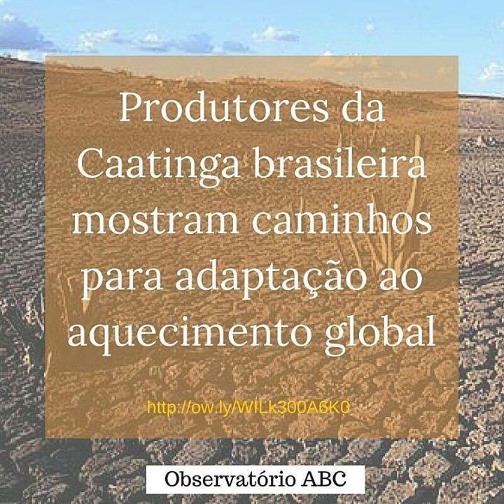 Confira o artigo em: http://ift.tt/1TEID3d #meioambiente #sustentabilidade #sustentavel #aquecimento #global #aquecimentoglobal #Brasil #artigo #observatorio #abc #observatorioabc by observatorioabc http://ift.tt/1OXzZOp