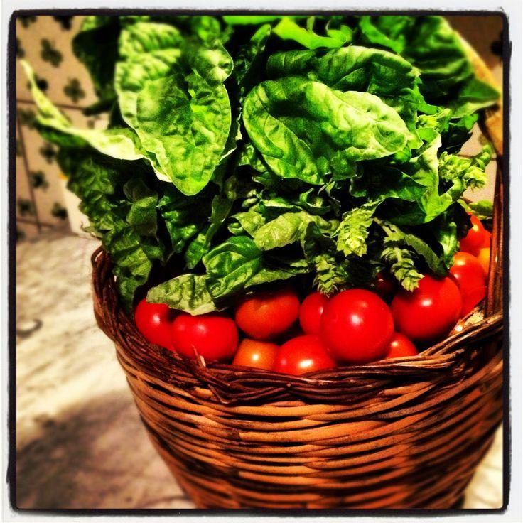 Beautiful vegetables basket from  bordone biofarm www.daraguccione.com