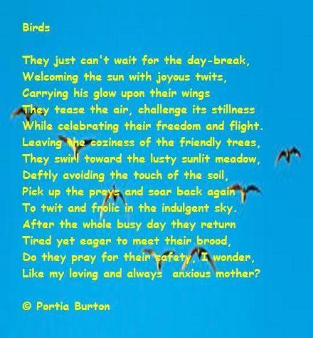 Birds-  poem by me © Portia Burton