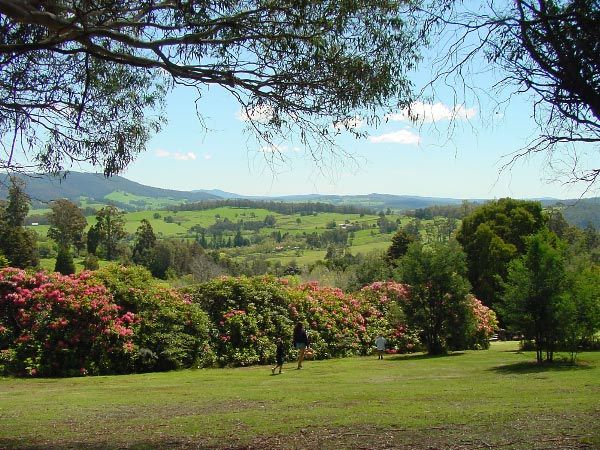 """""""Garden of Eden"""" ~ North East Tasmania (this image > Rhododendron garden in Lilydale by Dan Fellow). Article by Len Langan for Think Tasmania."""