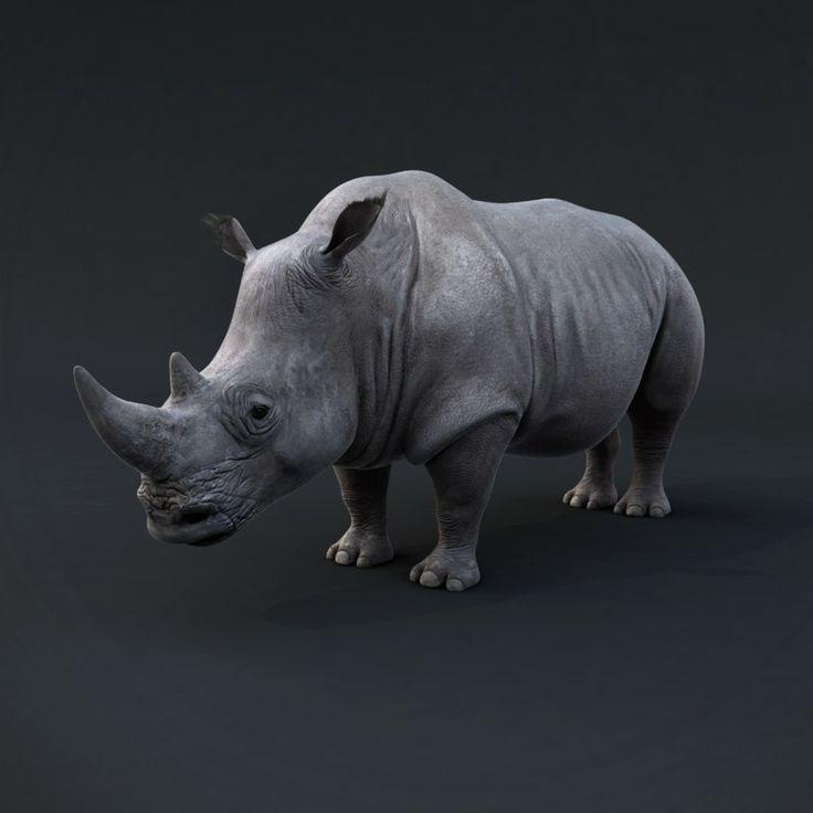 Realistic Rhino Render 3D Max - 3D Model