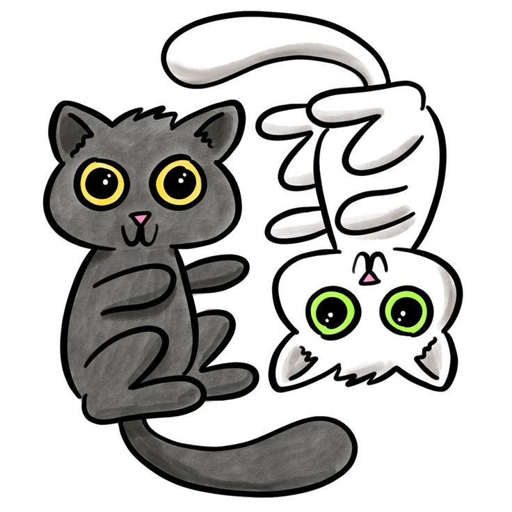 The Difference Between OTF and TTF, Explained w/Kittens