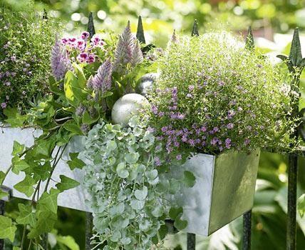 Stunning Blumenk sten ausw hlen und richtig bepflanzen