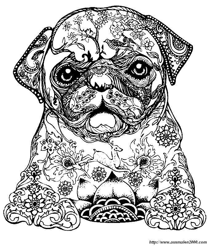 ausmalbild Ein kleiner Hund | Ausmalbilder | Pinterest | Adult