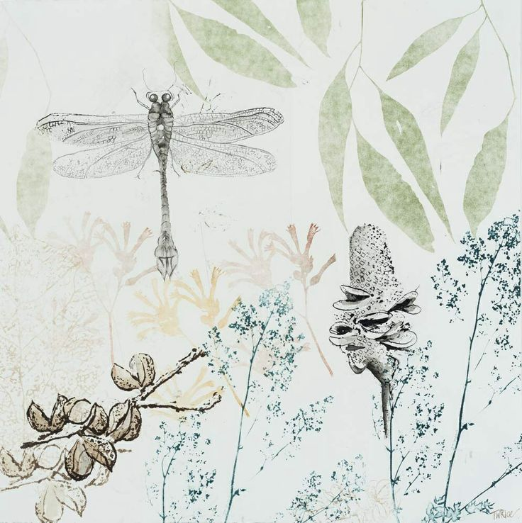 DRAGONS & BANKSIAS SERIES: Dragonfly, Banksia and Hakia 2014