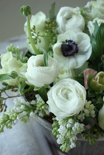 These are lovely, what are the white rose looking ones and the one with blue centre?