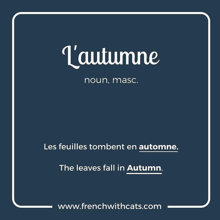 #Learnfrench in a fun way with our #French #WordOfTheDay. Today's word=l'autumne=autumn or Fall. One of our favourite seasons!