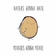 Image result for potato memes                                                                                                                                                                                 More