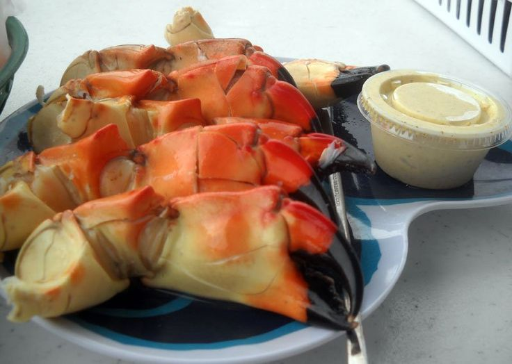 Starting Oct. 15, it's stone crab season, and if you want your stone crabs right off the dock, then head for the funky small town of Everglades City.