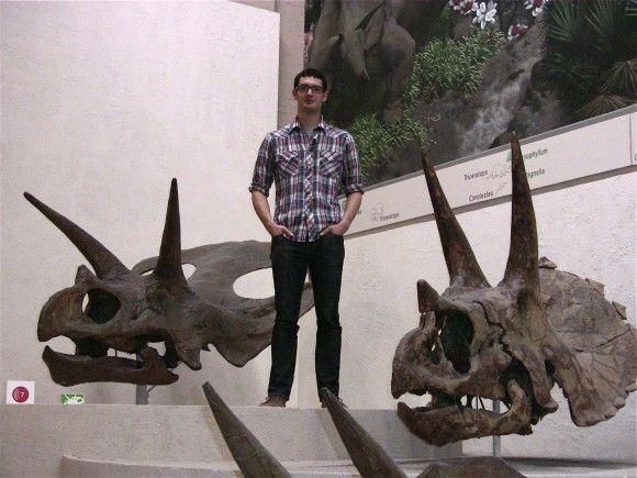 Zhuchengtyrannus Skull