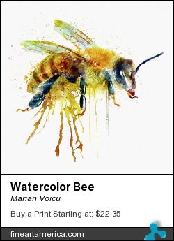 Watercolor painting of a bee.