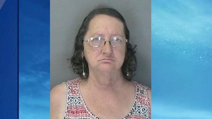 WARRENSBURG, NY (WRGB) -- The Warren County Sheriff's Office arrested a 60 year old Warrensburg woman, accused of welfare fraud.Investigartors say Regina Shaw failed to accurately report her total household income, obtaining $6,791 in SNAP benefits she was
