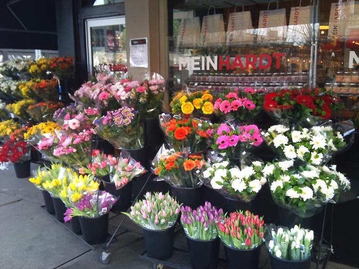 Meinhart blooms